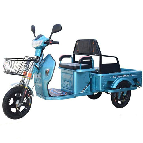 Flat-Panel Electric Tricycle