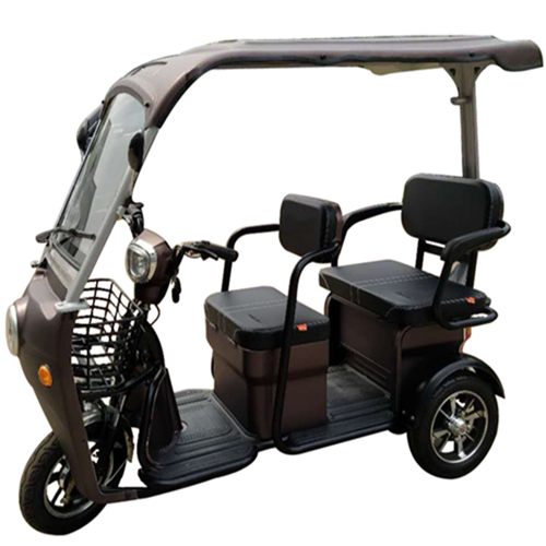 Popular Top-Selling Leisure Passengers Electric Tricycle