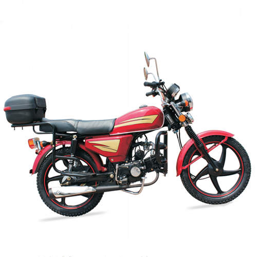 110cc Gas Adult Motorcycle